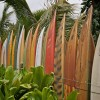 Special Collections: Surfboards