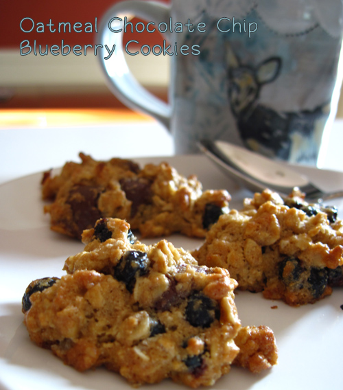 Oatmeal Chocolate Chip Blueberry Cookies for Mr. Indie Fixx