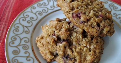 oatmeal cranberry & chocolate chip cookie recipe