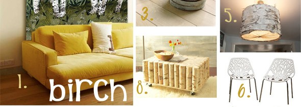 Birch inspired home decor
