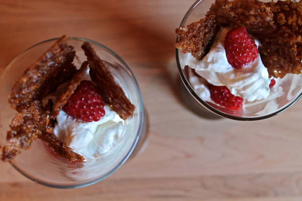 Chocolate Raspberry Pudding Parfaits Recipe — Dishmaps