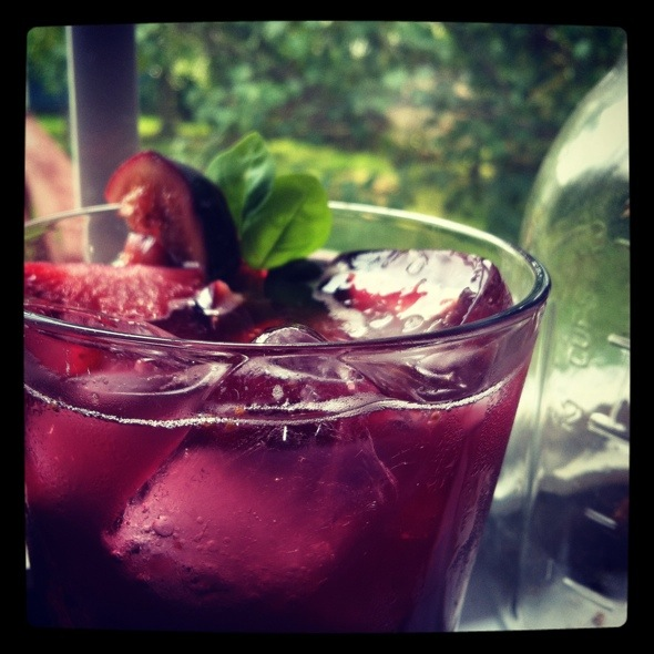 Summer Cocktail Series: Last Good Day of the Year Cranberry Sangria Spritzer with Figs