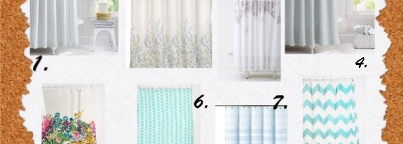 Which shower curtain should I get?