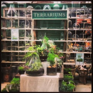 Supplies for terrarium making at Terrain.