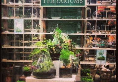 Inspiration at Shop Terrain